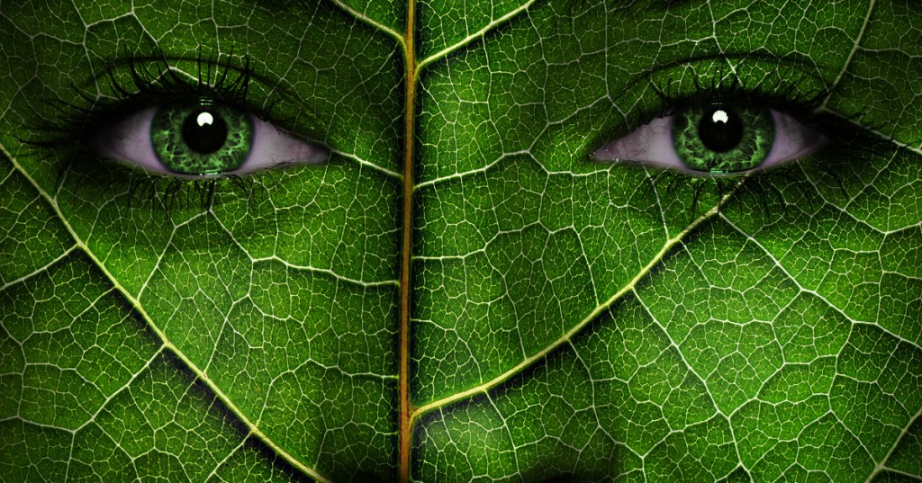 How Green Are You Personality Test